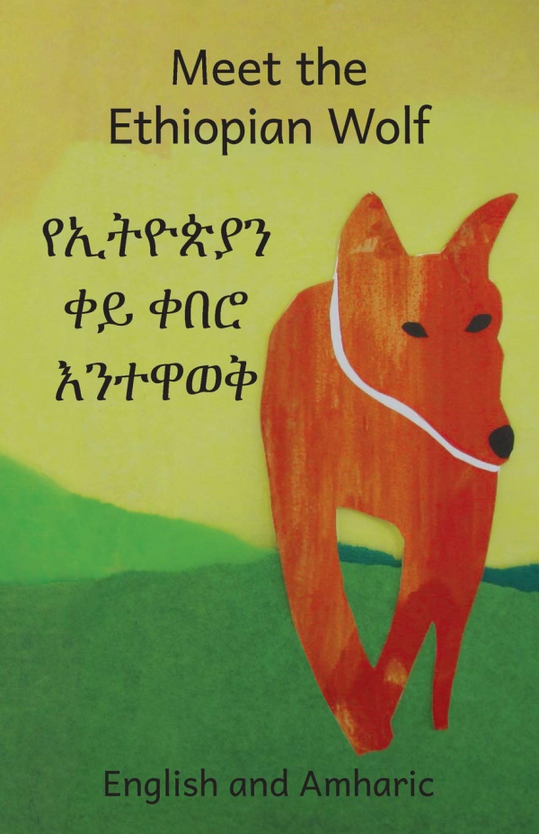 Meet the Ethiopian Wolf